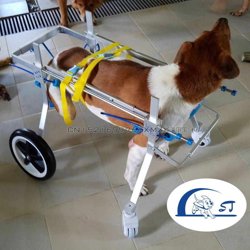 Cane A Piedi Ruote Passeggino Cane di Addestramento di Riabilitazione Sedia A Rotelle Supporto Regolabile Disabili A Piedi Ausiliario Allenatore Per Il Cane-in Trasportini per cani da Casa e giardino su  Gruppo 1