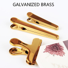 Stainless Steel with Brass Plated Clamp / Memo Clip Binder Clip for Bullet Journal Office School Supplies