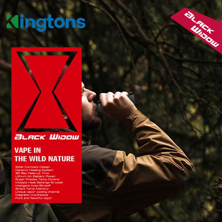 black window kingtons electronic cigarette kit detail