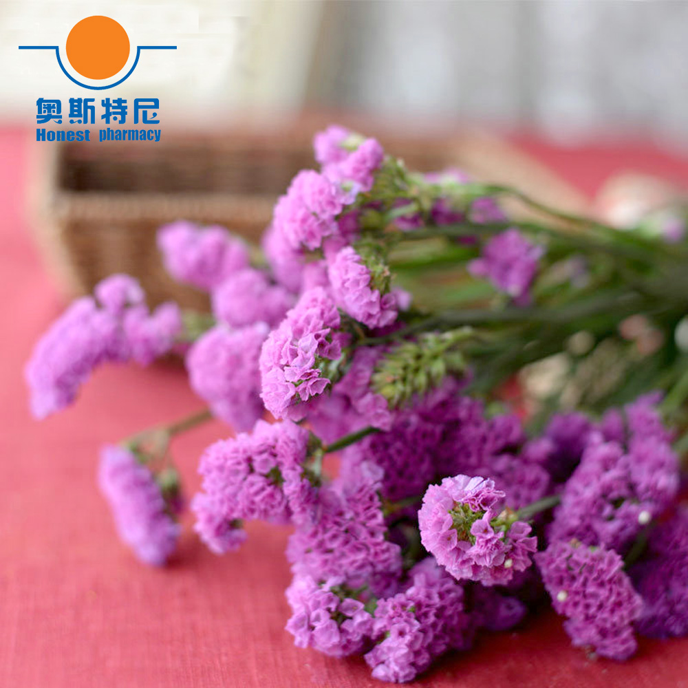 Red Rose Color Dried Natural Flower Bouquets Natural Dried Myosotis