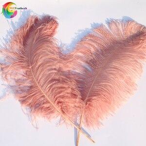 Image 5 - 10 adet büyük kutup tamamen doğal deri pembe devekuşu tüyü 24 26 inç düğün parti karnaval Prop dekorasyon tüyleri