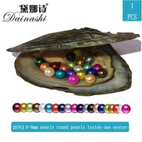 Wholesale 1PC Freshwater Pearl Oyster 20pcs 6 8 mm Nearly Round Pearls Inside One Oyster Shell 20 Colorful Genuine Pearl Can G