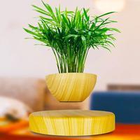 Levitating Air Bonsai Pot Magnetic Levitation Suspension Flower Floating Decor