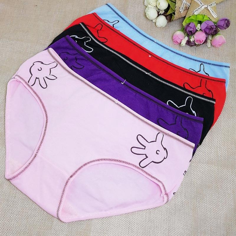 women cotton lace many color size sexy underwear/ladies underwpanties/lingerie/bikini ear pants/ th0ong/g-string YH3547 6pcs