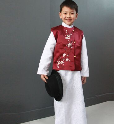 tang zhuang tang suit for boys ancient chinese costume boys birthday party clothing birthday gifts festival costumes for boys on Aliexpress.com | Alibaba ...  sc 1 st  AliExpress.com & tang zhuang tang suit for boys ancient chinese costume boys birthday party clothing birthday gifts festival costumes for boys on Aliexpress.com | ...