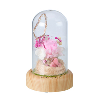 WR Artificial Decorations Bluetooth Audio Pink Immortal Rose In Glass Dome W Led Music Player For