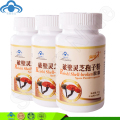3 bottles/lot Reishi Mushroom Shell-broken ganoderma lucidum spore powder capsules free shipping
