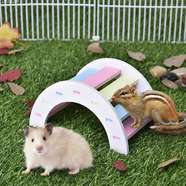 US $4 22 15% OFF|Hamster Hedgehog Syrian Hamster Toy / Colorful Arch Bridge  / Assorted Color Ladder Little Pet Exercise Toy Brain Toy-in Toys from
