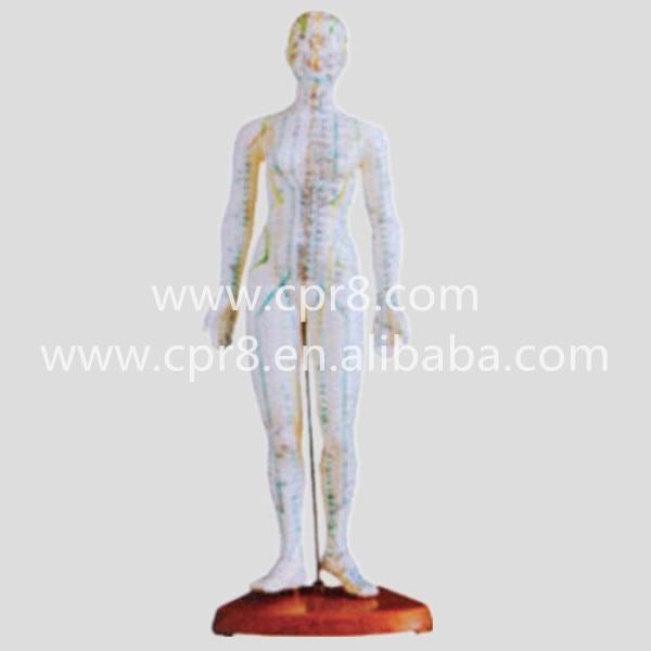 BIX-Y1009 48 CM Female Body Acupuncture Model  MQ202