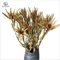 MiHuaGe Africa Wood Lily Dried Flower Natural Plant Dried Flower Nordi Home Living Room Cafe Wedding Party Festival Decoration