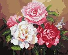Peonía pintura al óleo sin marco de imagen pintura by numbers diy digital pintura al óleo decoración for living room g382
