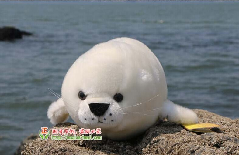 larggest 74cm white seal plush toy high quality throw pillow surprised birthday gift b4804 lovely giant panda about 70cm plush toy t shirt dress panda doll soft throw pillow christmas birthday gift x023