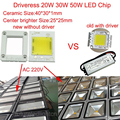 20W 30W 50W ac 110v 220v driverless led chip integrated Driver Dimmable for led flood light landscape down light indoor
