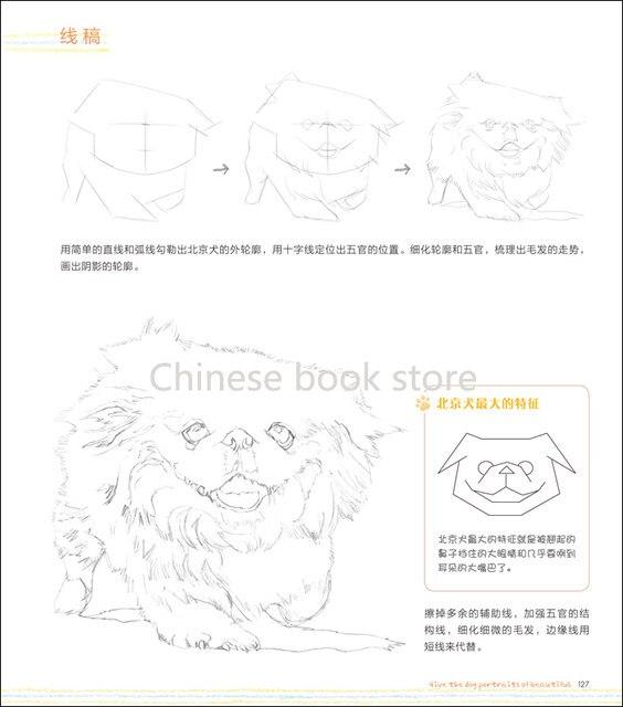 Tienda Online Dibujo de lápiz de color chino libros para adultos ...