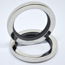 PTFE Oil-Seals with SS304 Housing for Gear-Boxes/extruders 54--73--10-Mm Clockwise Dual-Lip