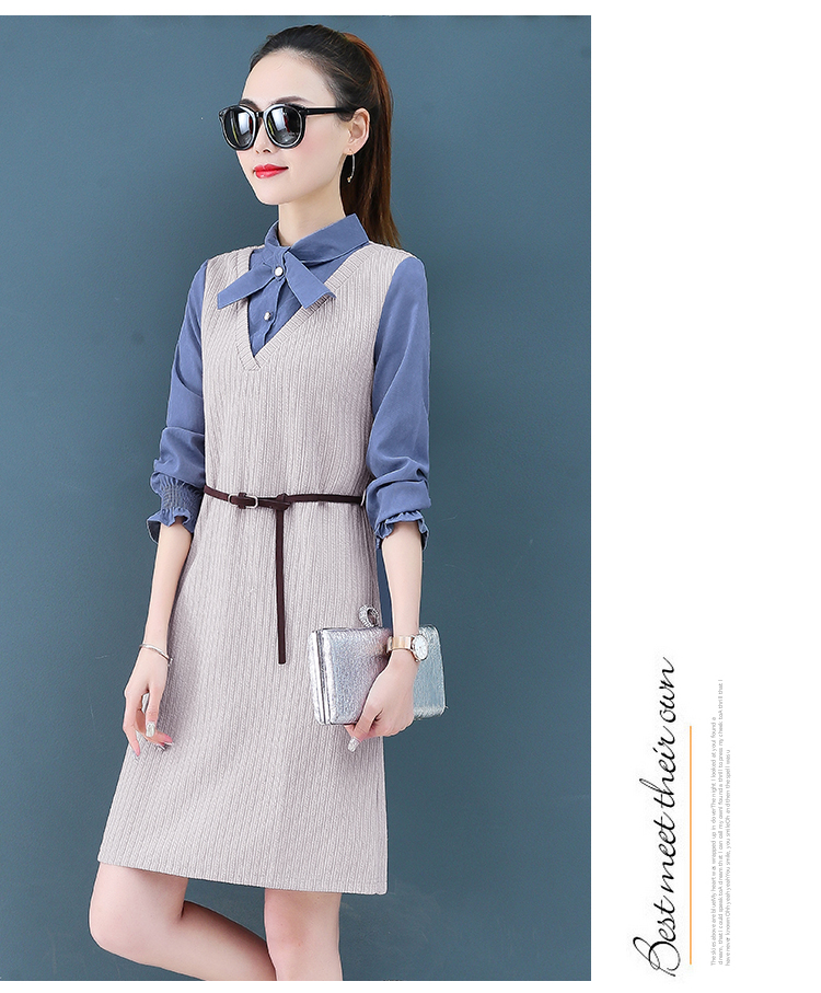 Render a dress in female new spring in the spring and autumn qiu dong fake two piece suit dress long 14