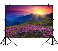 5x7ft Mountains Green Grass Flowers Sunset Glow Nature Polyester Photo Background Portrait Backdrop
