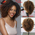 HOT sale! afro kinky lace front wigs ombre afro kinky curly virgin hair lace front wigs full lace human hair wig for black woman