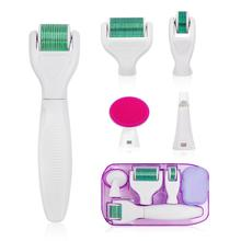 6 in 1 Microneedle Derma Roller Kit for Face and Body 300/720/1200 Titanium Derm