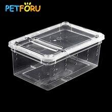 Petforu 5 шт. пластиковая Матовая коробка для кормления рептилий ящерица паук Кормление инкубационный контейнер-S
