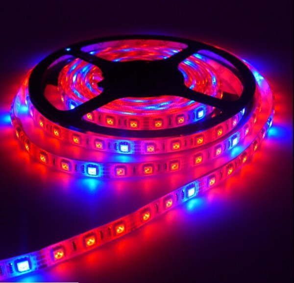 buy popular 9fecb 75160 US $8.69 21% OFF LED Grow Light DC12V Waterproof Growing LED Strip 5050 for  Aquarium Greenhouse Plant Light-in LED Grow Lights from Lights & Lighting  ...