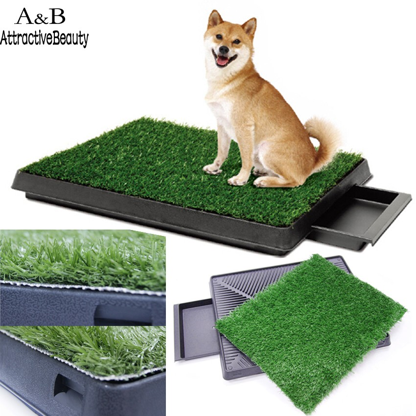 pet potty training grass