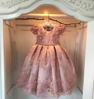 2017 Pink Flower Girl Dress Bead Lace Wedding Formal Ball Gowns Custom Size 2 14