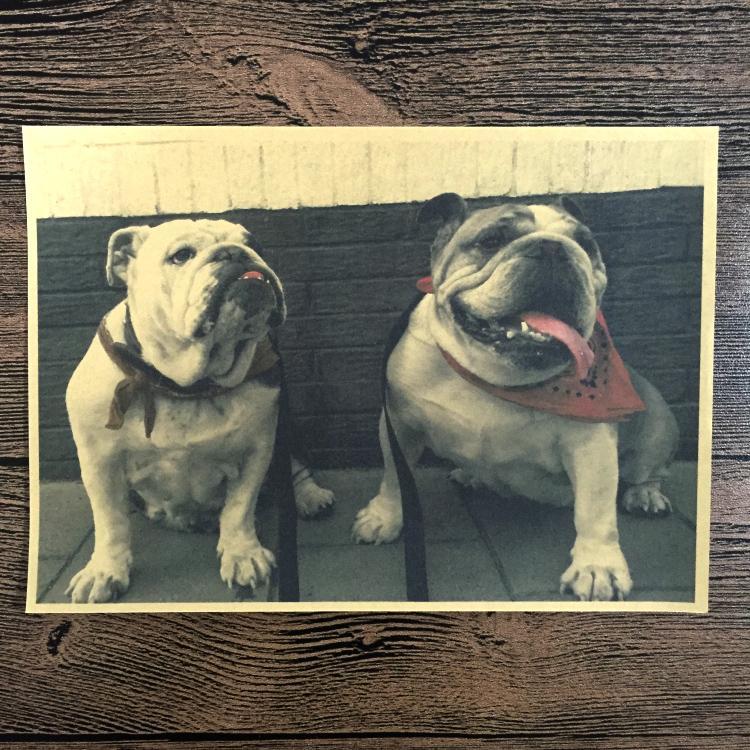 UK English Bulldog Retro Classic Vintage Poster Bar/cafe/Pub Wall Art Crafts Sticker Living room home Decor 42x30cm YSP-B115