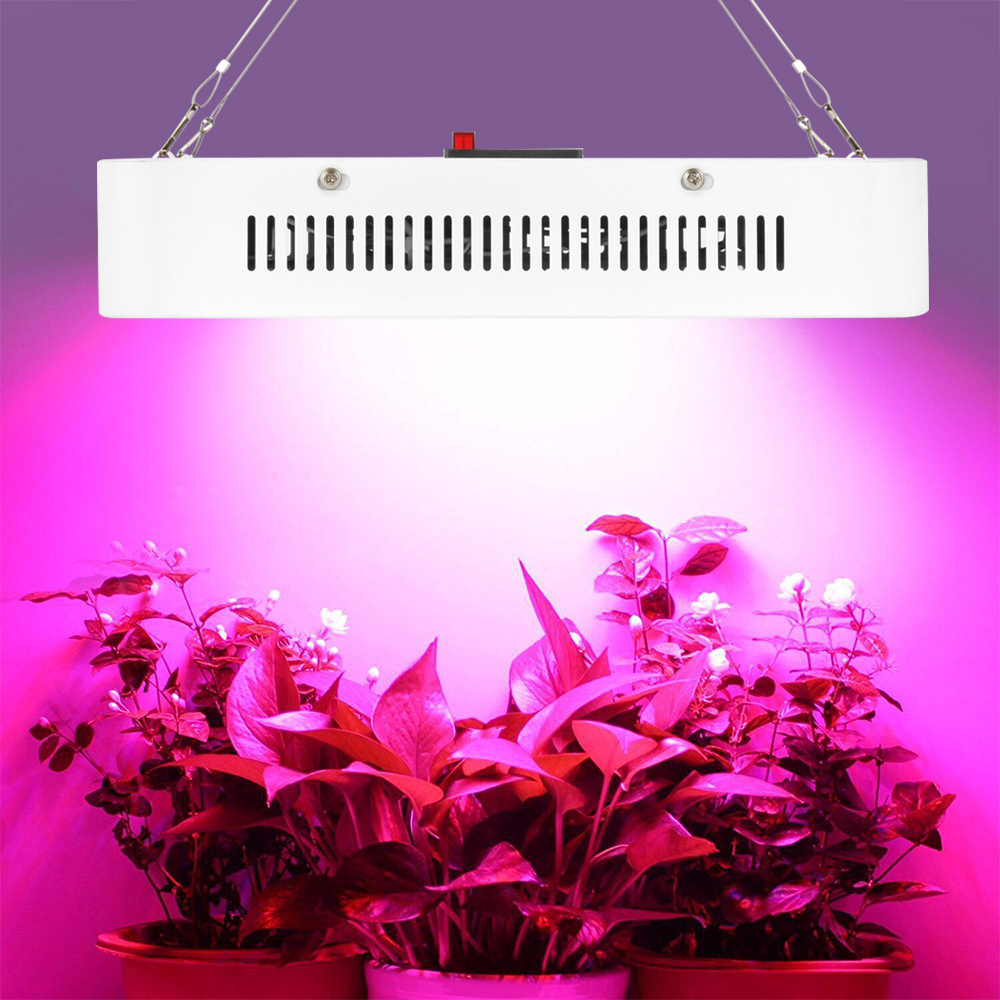 1pcs 300w led grow light full spectrum led plant growth lamp 380 1pcs 300w led grow light full spectrum led plant growth lamp 380 840nm for greenhouse plant flowering grow tent indoor lighting in led grow lights from parisarafo Choice Image
