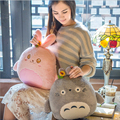 Cute Cartoon Animal Plush Pillow and Blanket Staffed Soft Rabbit Totoro Bear and Dog Pillow Air Conditioning Blanket Nice Gift