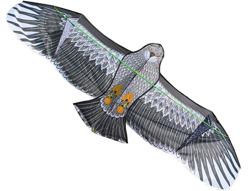 Livraison gratuite 3.6 m grand aigle cerf-volant nylon ripstop jouets de plein air gros cerfs-volants volant chaussette cerf-volant pour adultes albatros kaixuan oiseau