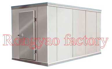 RY-FR-CR01B 10 -18 Degree Cubic Meters Freezer Walk Ins Cold Room