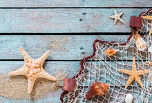 Laeacco Wooden Board  Starfish Shells Sands Net Baby Photography Background Customized Photographic Backdrops For Photo Studio