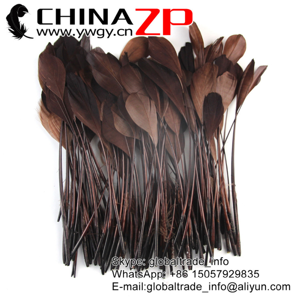 Gold Supplier CHINAZP Factory 100pcs/lot Fantastic DIY Decoration Dyed Brown Stripped Goose Feathers