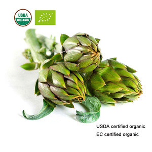 Image 2 - USDA と EC 認定有機アーティチョーク葉エキス 10:1 Cynarin