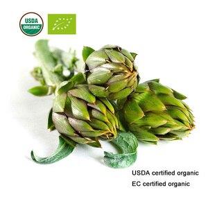 Image 2 - Usda e ce certificou extrato orgânico da folha de alcachofra 10:1 cynarin