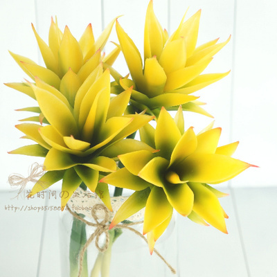 (4 pcs/lot)The simulation of tropical succulent high pole agave single branch yellow artificial plants for decoration
