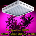 Latest Fitolampa LED Grow Light 300W 450W 900W 1200W 2000W LED Plant Lamp Double Chips Full specturm for hydroponics system tent
