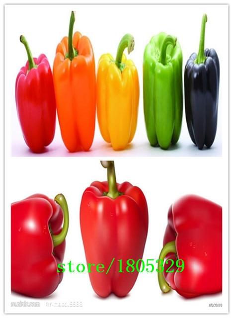 GGG Original Pack 100 Seeds / Pack, Pepper seeds, vegetable pepper, mixing machine seed