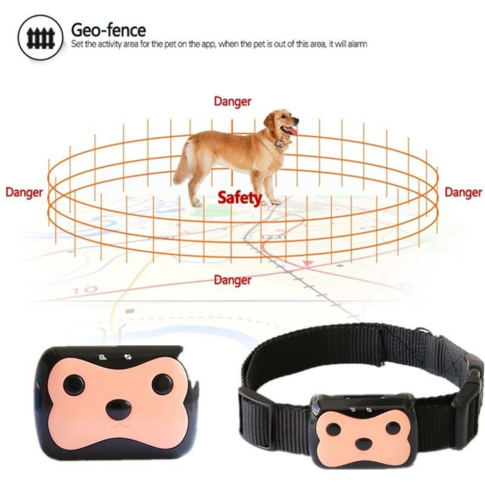 Dog Tracker Gps Reviews
