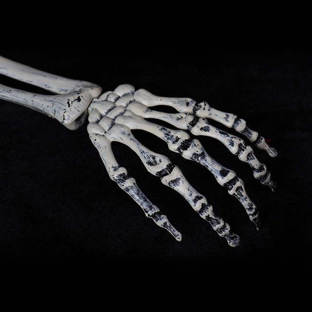 Us 11 16 28 Off Hot Sale 3 Piece Halloween Horror Buried Alive Skeleton Skull Garden Yard Lawn Decoration Halloween Decorations In Party Diy