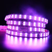 1 Set AC 220 V RGB LED Strip Licht 5050 SMD Waterdichte IP68 Siliconen Tube 60 LEDs/M 120 leds/m + EU Controller KIT 1 M/5 M/6 M/8 M/20 M