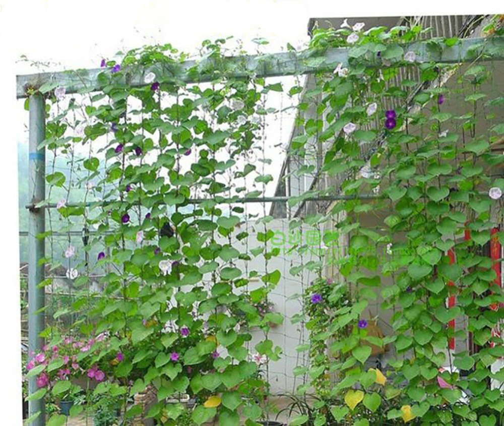 5 9ft X 1 8x1 8 Meters Durable Nylon Trellis Net Garden Netting Plant Support For Climbing Plants In Shade Accessories From Home On