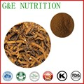 Pure Natural Cordyceps Sinensis Extrato 5:1 200g