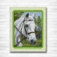 White Horse Pattern Printed On The Canvas DMC 11CT 14CT Cross Stitch Kits Needlework Sets Full