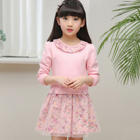 Autumn Dress Girls Long Sleeve 2017 Winter Girl Princess Dresses Children Dresses Fit 4 5 6