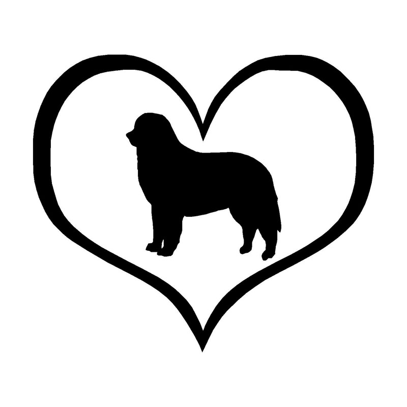 13.6*11.9CM Bernese Mountain Dog Vinyl Decal Waterproof Car Stickers Car Styling Bumper Accessories Black/Silver S1-0438
