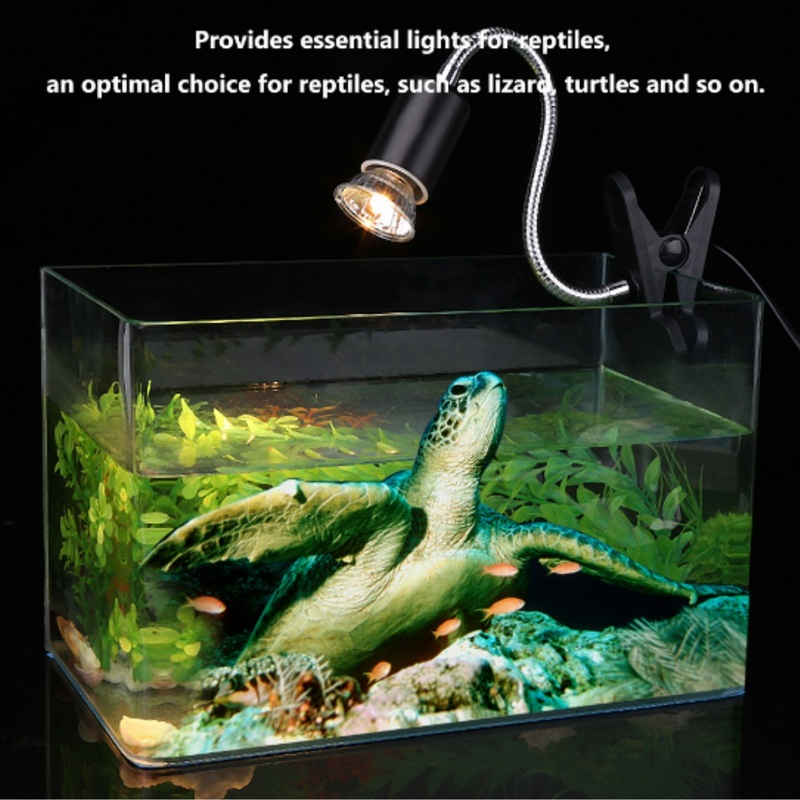 25/50/75W Reptile Lamp Bulb Turtle Basking Heating Lamp UV Light Bulbs Amphibians Lizards Temperature Controller