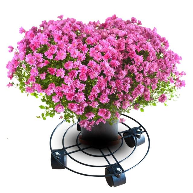 Multifunctional Indoor Outdoor Plant Caddy With Wheels Heavy Duty Iron Potted Flower Pot Rack Stand