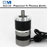 High Reliability Gear Brushless Dc Motor Planetary Gearbox Ratio 10 1 With NEMA 23 60W 24V